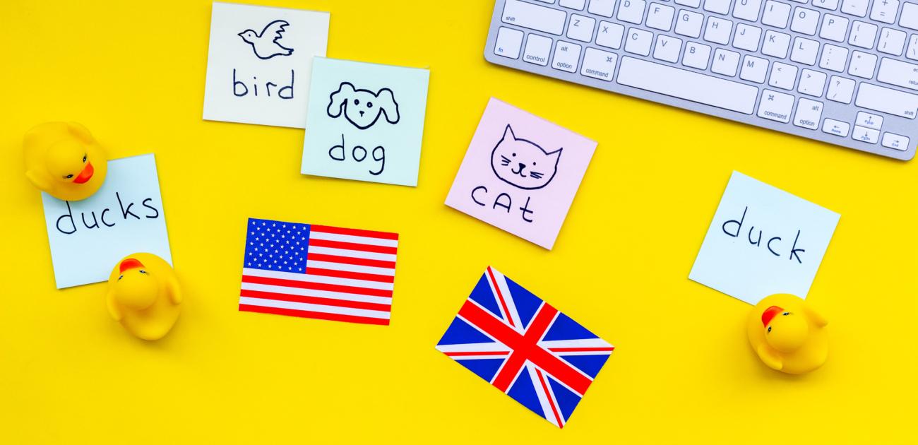 Karten mit englischen Vokabeln